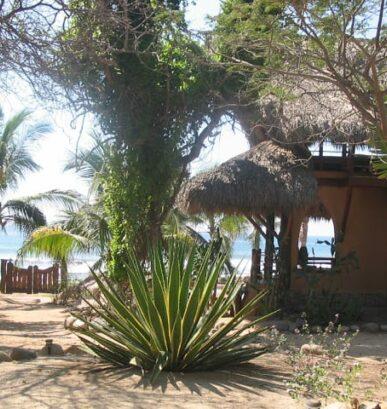 Tapanco, Casa Viva Troncones
